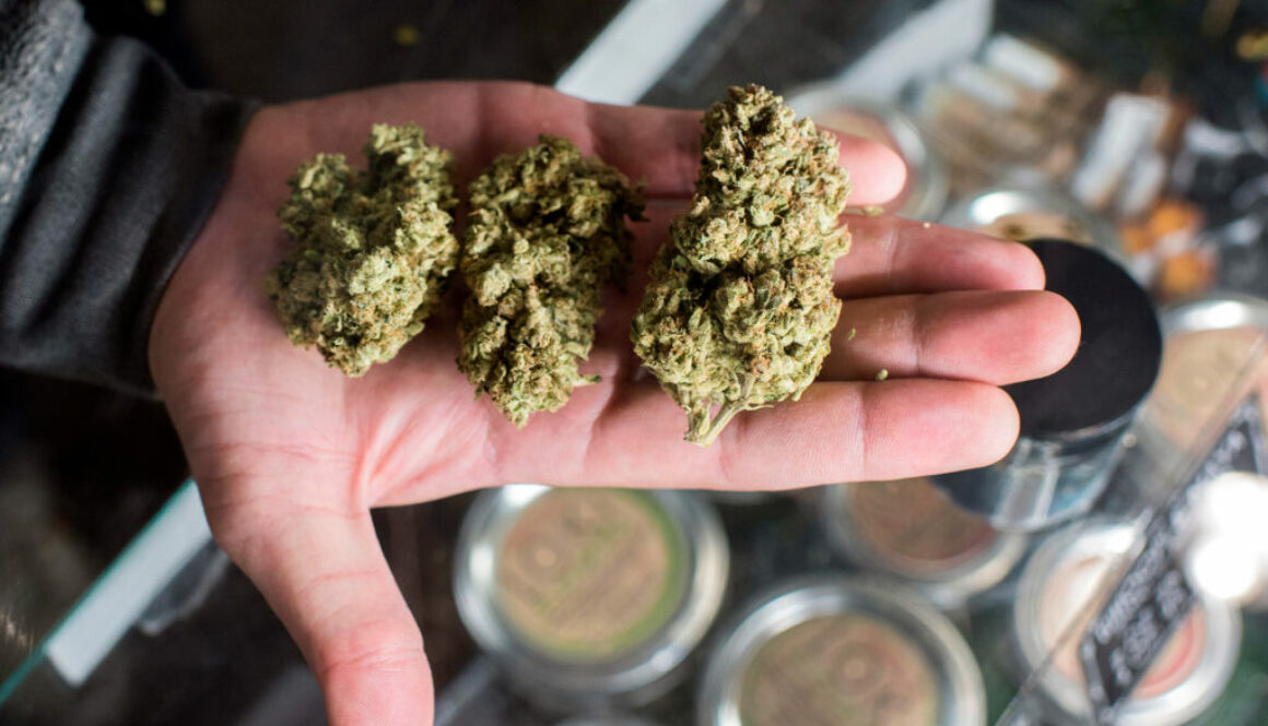 Weed Worries: Cannabis Sales Are Steady– in the meantime