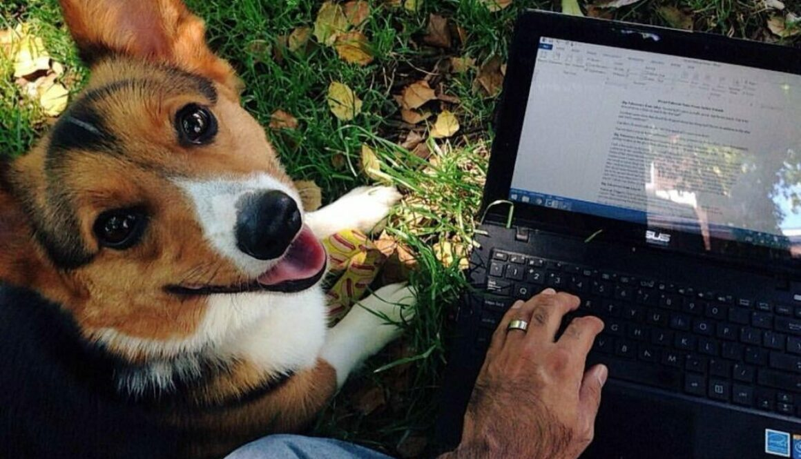 An author composed a lovely homage to his late pet dog disguised as writing suggestions