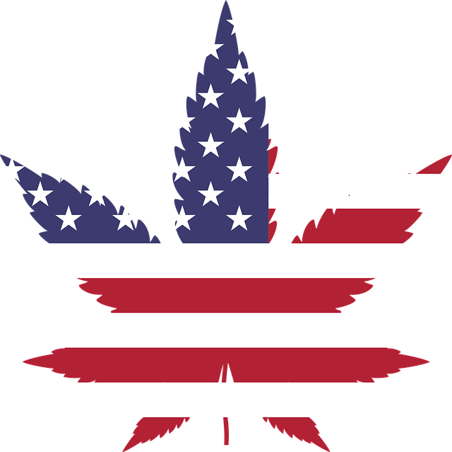 FDA Guidance On Cannabis Research: A Glimpse Of What's To Come For CBD Products?